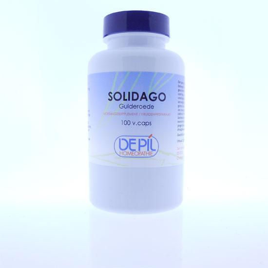 Solidago capsules