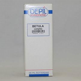 Betula complex
